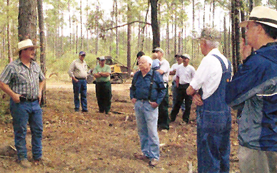 Foresters during a tour of a tree farm